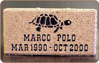 engraved brick with epoxy fill